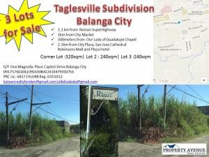 Taglesville
